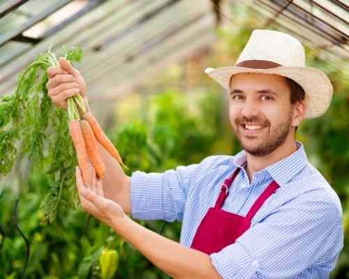 Are carrots good for the skin Burned Skin Treatment