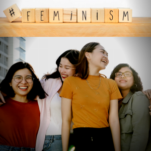 what is liberal feminism